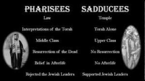 pharisees:sadducees
